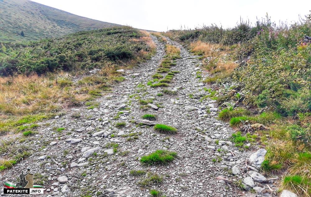 Изкачване на връх Миджур - към билото