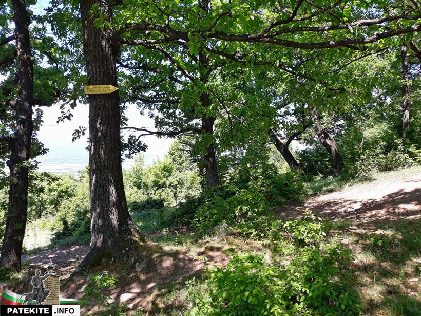 Изкачване към Крепост Копсис - Аневско кале