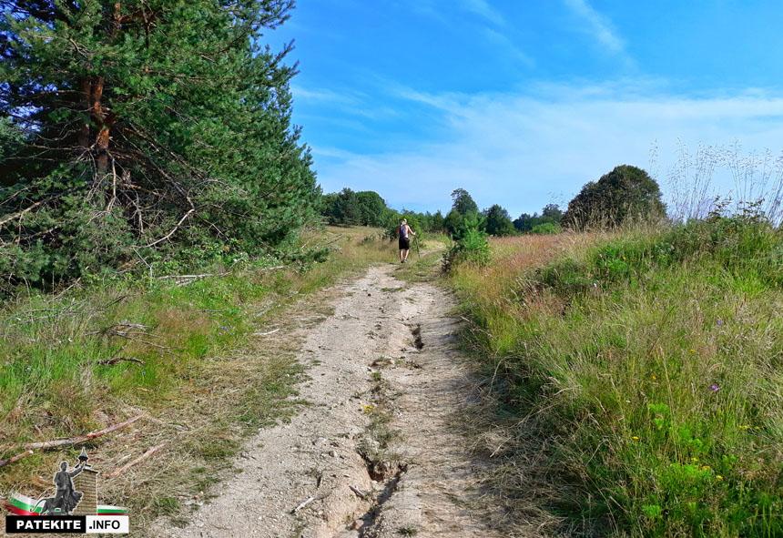 Пътеката към връх Богдан