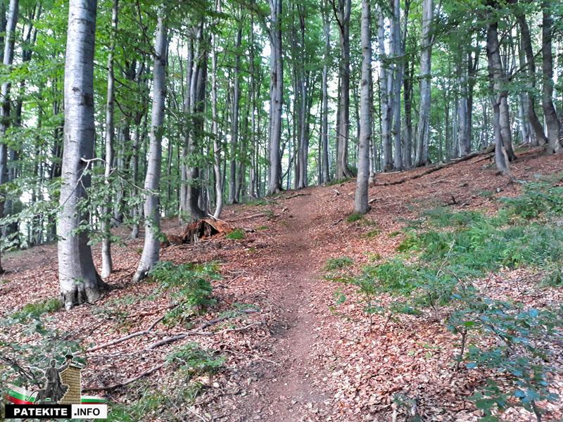 Пътеката преди връх Богдан