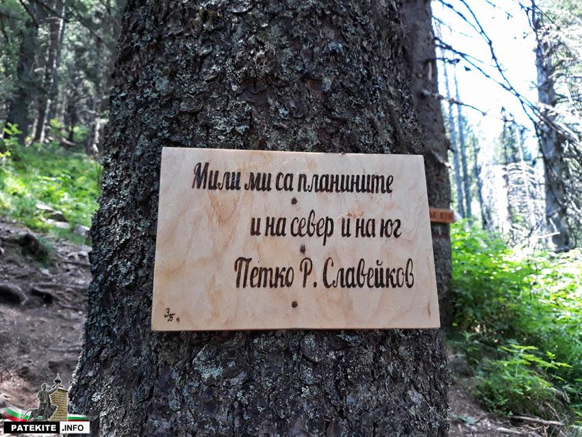 Цитати за планината по пътя за връх Ком